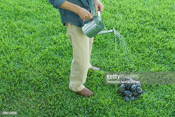 Man standing on grass, watering pile of stones with watering can, waist down