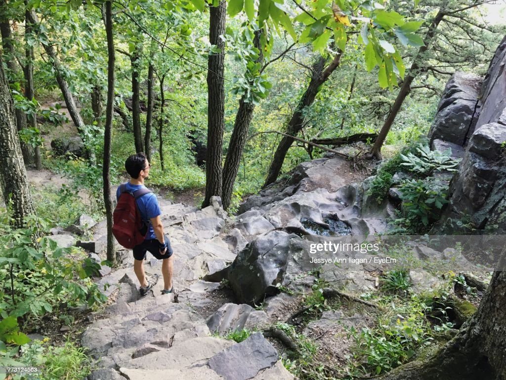 Man Standing On Rock At Forest : Photo