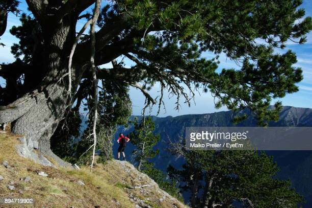 Man Standing On Rock Formation By Tree In Mountain