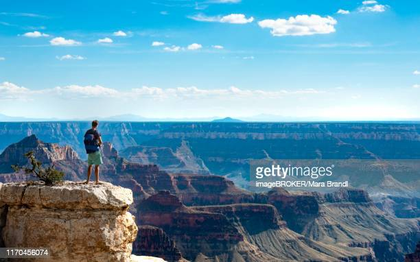 Man standing on rock, view of canyon landscape from Bright Angel Viewpoint, North Rim, Grand Canyon National Park, Arizona, USA