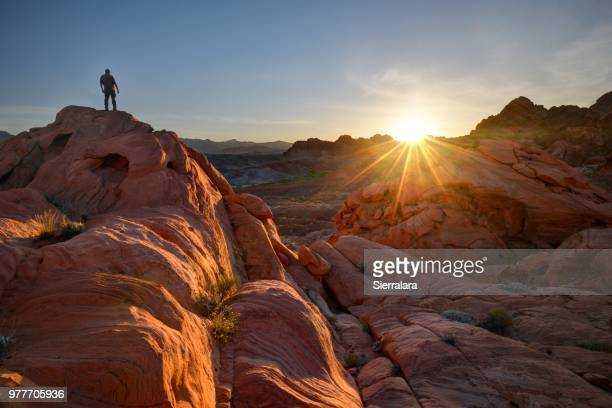 man standing on rocks, valley of fire state park, nevada, america, usa - valley of fire state park stock photos and pictures