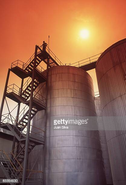 Man standing on top of brewery storage tan