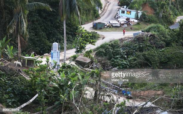 Man stands amidst destruction caused by Hurricane Maria on December 20, 2017 in Morovis, Puerto Rico. Barely three months after Hurricane Maria made...