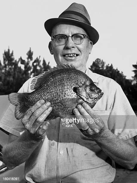 A man stands holding a 2 pound 6 ounce bluegill caught using 10 pound line on May 15 1965