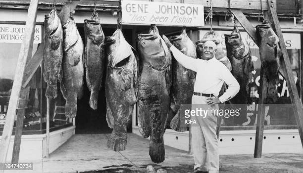 A man stands in front of Gene Johnson Sporting Goods with 9 goliath grouper/Jewfish in the United States circa 1920