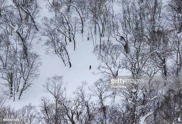 A man stands on a slope at the Niseko Hanazono resort operated by Nihon Harmony Resorts KK in Kutchan Hokkaido Japan on Sunday Feb 15 2015 The ski...