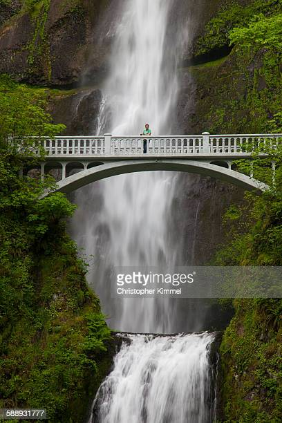 a man stands on the benson bridge in front of multnomah falls, oregon. - multnomah falls stock pictures, royalty-free photos & images