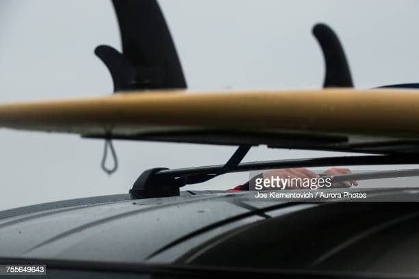 Man strapping down stand up paddle board on car roof, Scarborough Marsh, Maine, USA