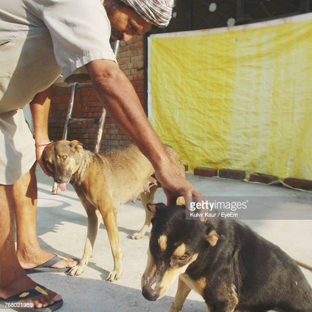 Man Stroking Dogs While Standing On Footpath