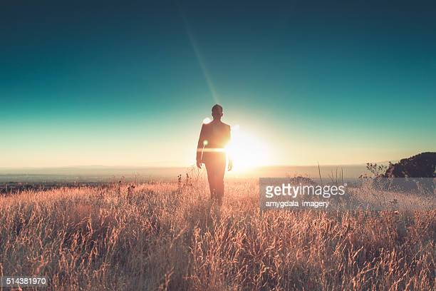 man sun business suit nature landscape