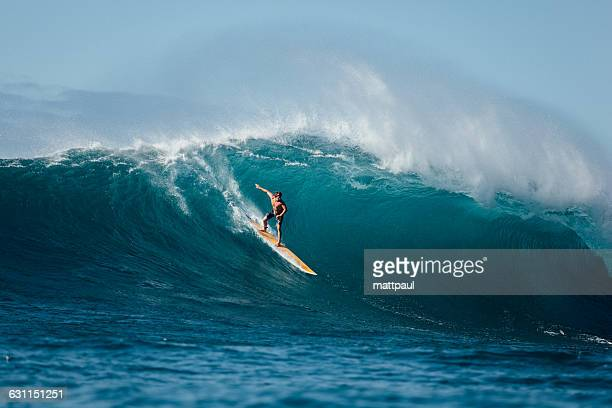 man surfing wave, waimea bay, north shore, oahu, hawaii, america, usa - waimea bay hawaii stock photos and pictures