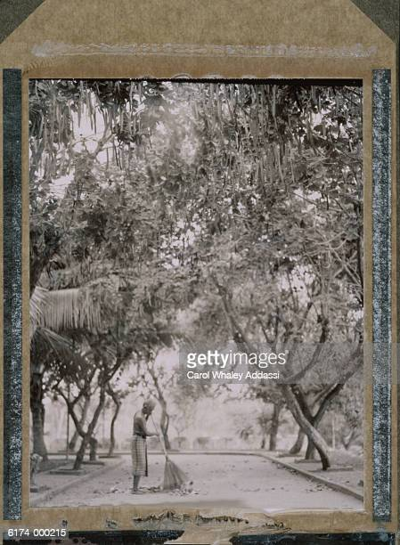 Man Sweeping Under Trees
