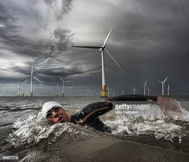 man swimming in sea - windmill stock pictures, royalty-free photos & images