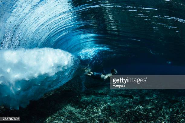 man swimming underwater over a shallow reef, kalapana, west puna, hawaii, america, usa - kalapana stock pictures, royalty-free photos & images