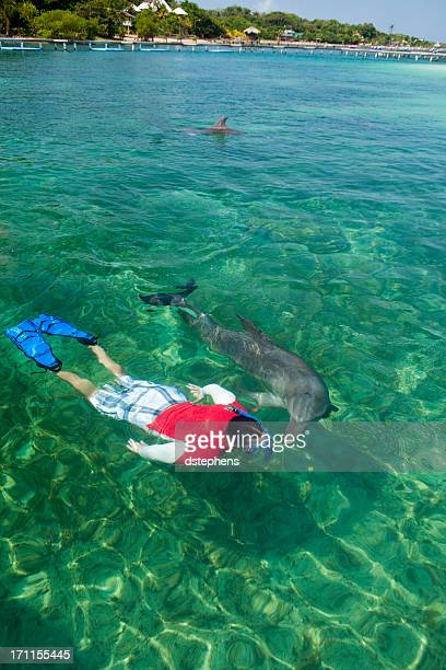 Man swimming with dolphin