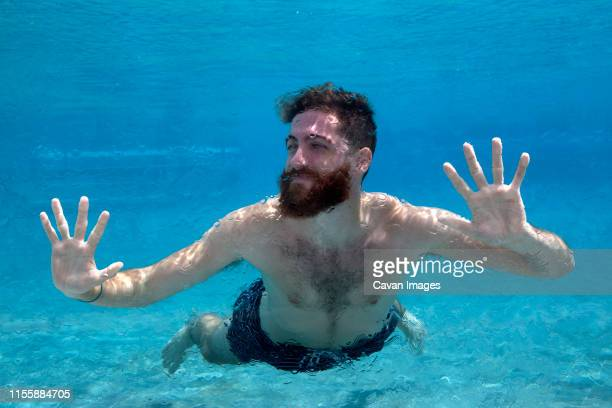 man swims in glass pool on vacation - hairy chest photos et images de collection