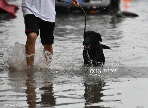 Pedestrians walk on a flooded street caused by heavy rainstorms in Harbin city northeast China's Heilongjiang province 19 July 2018Rainstorms...