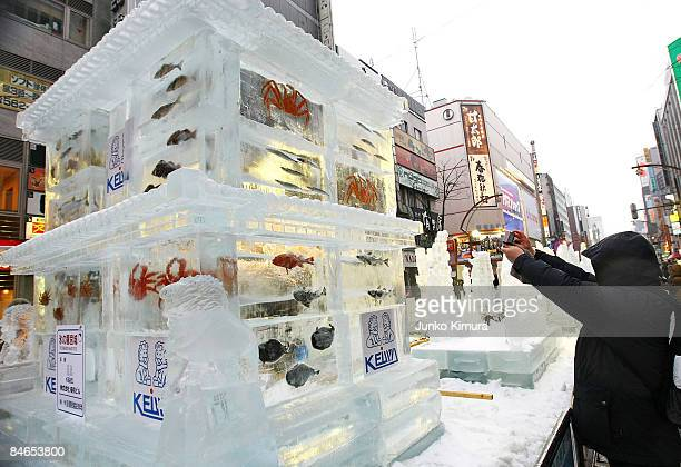 A man takes a photo of an ice sculpture with real fish frozen inside during the 60th Sapporo Snow Festival on February 5 2009 in Sapporo Japan The...