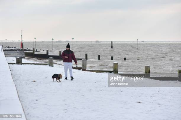 Man takes his dog for a walk along Chalkwell beach after more snow fell overnight on February 11, 2021 in Southend on Sea, England. Storm Darcy...