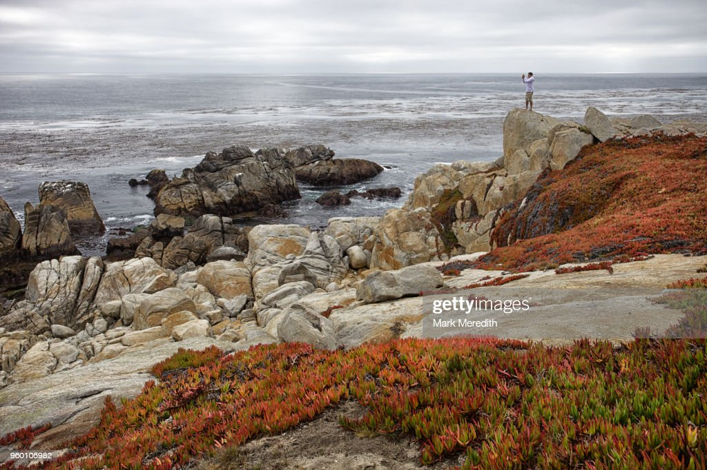 Man taking a photo on the coastline of 17 Mile Drive near Monterey, California : Stock-Foto