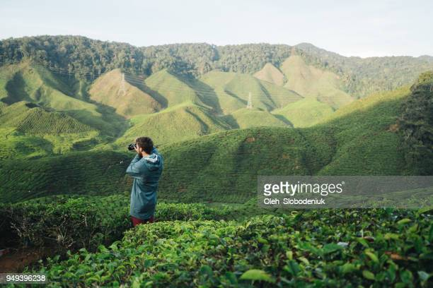 man  taking photo  at tea plantations - photography themes stock pictures, royalty-free photos & images