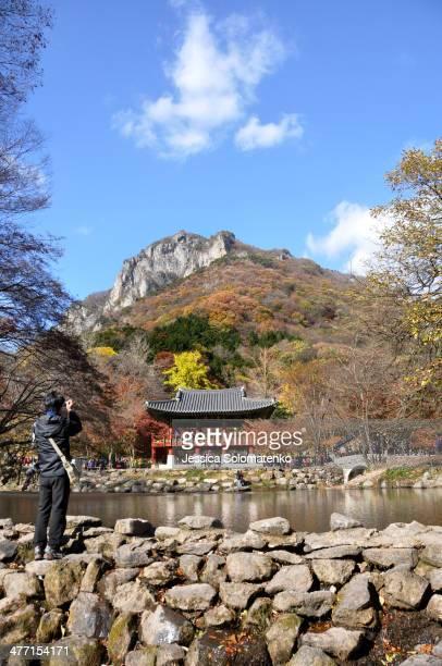 Man taking photo of baegyangsa temple in South Korea