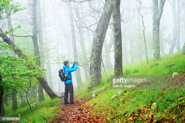 Man taking photograph while hiking in Shenandoah National Park, Virginia, USA