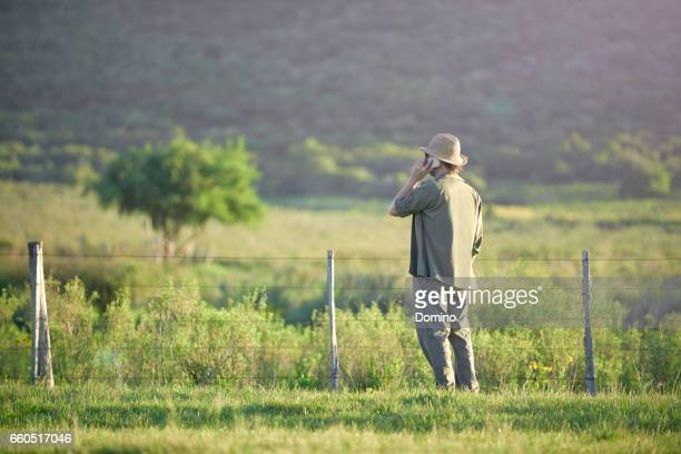 man talking with smartphone in landscape - teléfono móvil stock pictures, royalty-free photos & images