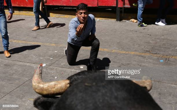 A man taunts a bull during the Festival of Huamantlada in Huamantla Tlaxcala Mexico on August 19 2017 The festival consists of the crowd running 17...