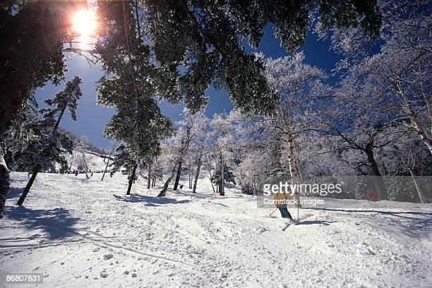 man telemark skiing - vermont stock pictures, royalty-free photos & images