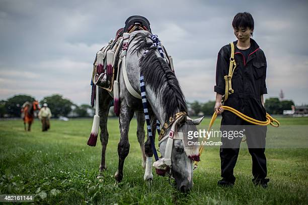Man tends to a horse while waiting for competition to start during the Soma Nomaoi festival at Hibarigahara field on July 25, 2015 in Minamisoma,...