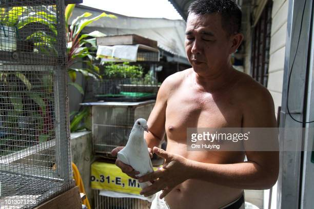 A man tends to his pet pigeon in a village in Air Itam that forms part of the 234 acre land acquired by the 1MDB fund on August 1 2018 in Penang...