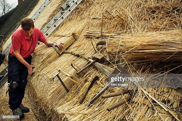Man thatching a roof, thatching tools, including a wooden mallet, shears, a leggett and hooks.