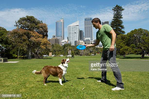 man throwing flying disc for border collie, side view - luoghi geografici foto e immagini stock