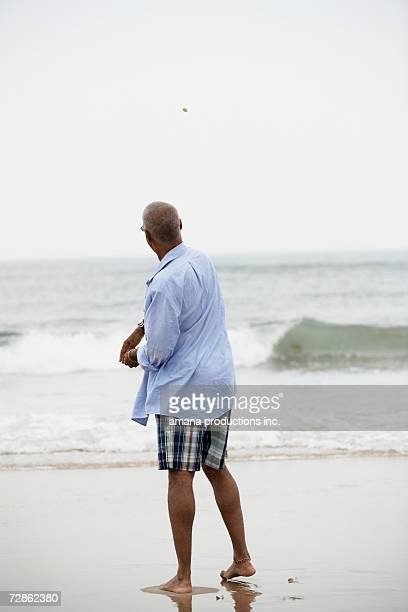 Man throwing stone into lake (rear view)