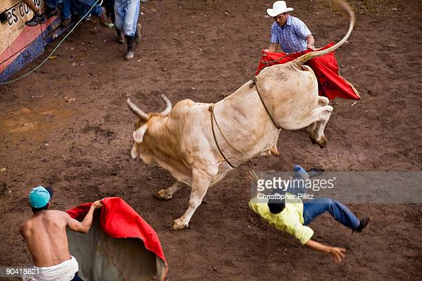 Man thrown off raging bull in ring