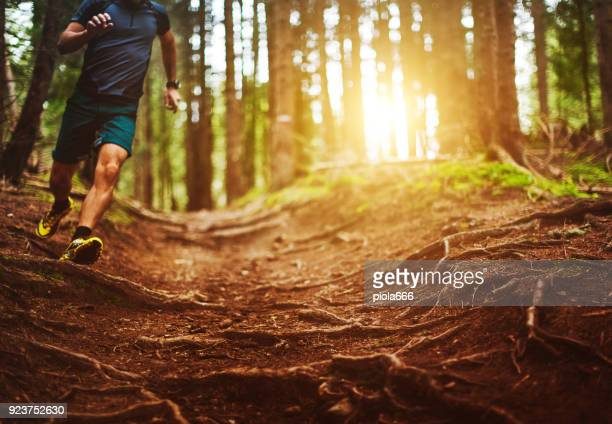 man trail running in the forest - cross country running stock pictures, royalty-free photos & images