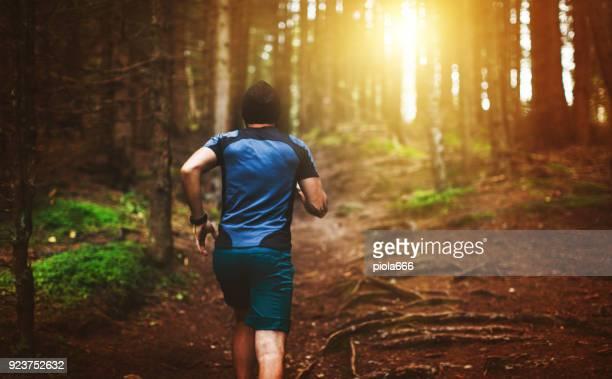 man trail running in the forest - area selvatica foto e immagini stock
