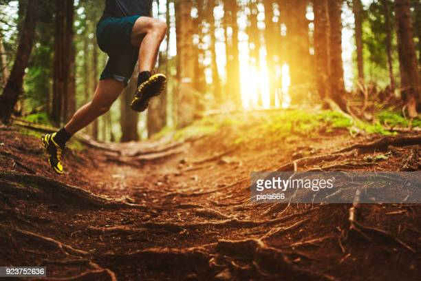 man trail running in the forest - named wilderness area stock pictures, royalty-free photos & images