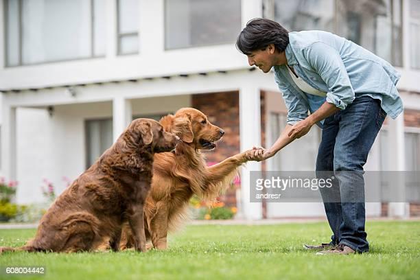 man training a couple of dogs - training grounds imagens e fotografias de stock