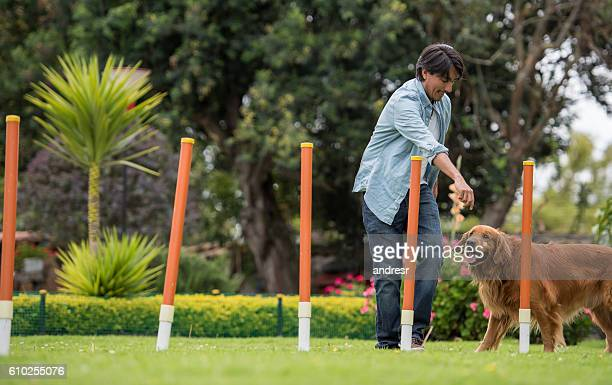 man training a dog - training course stockfoto's en -beelden