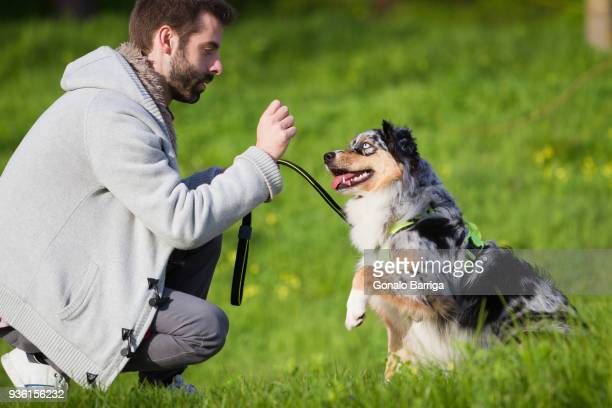 Man training dog to sit in park