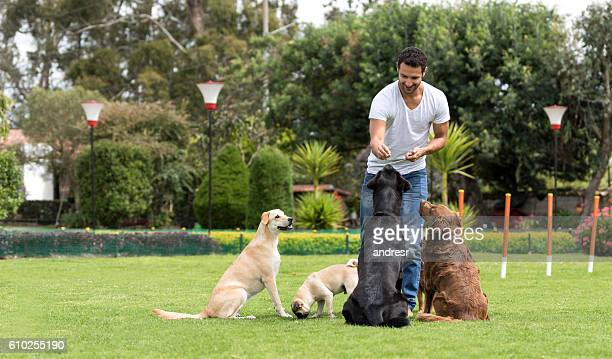 Man training dogs at the park