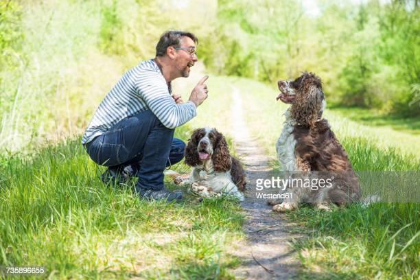 Man training dogs