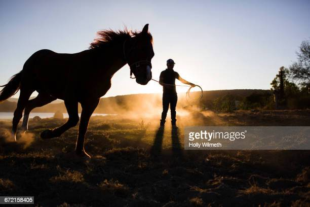Man training horse on rein