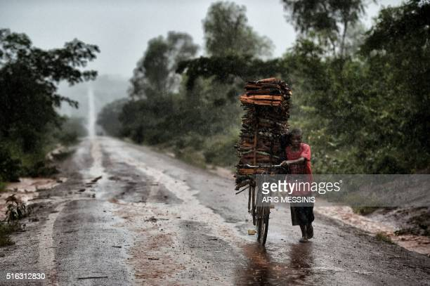 A man transports wood onto a bicycle under heavy rain outside Lilongwe on March 16 2016 / AFP / ARIS MESSINIS / RESTRICTED TO EDITORIAL USE