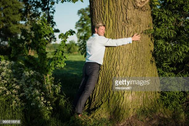man tree hugging - tree hugging stock pictures, royalty-free photos & images