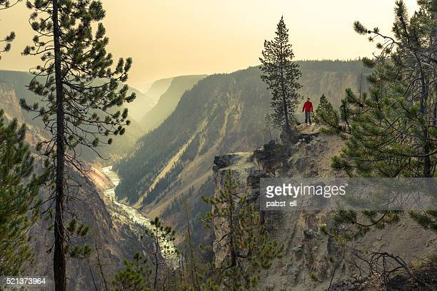 man trekking by the grand canyon of the yellowstone - yellowstone river stock photos and pictures