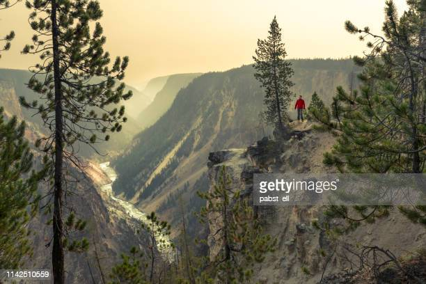 man trekking by the grand canyon of yellowstone river - yellowstone national park stock pictures, royalty-free photos & images