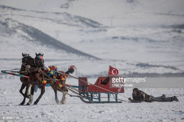 A man tries to control his horses after falling out of his sled while taking part in a horsedrawn sled race across the frozen Cildir Lake during the...